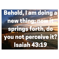 Day14 Behold, I am doing a new thing; now it springs forth, do you not perceive it-