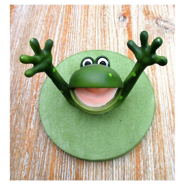 Help Frog